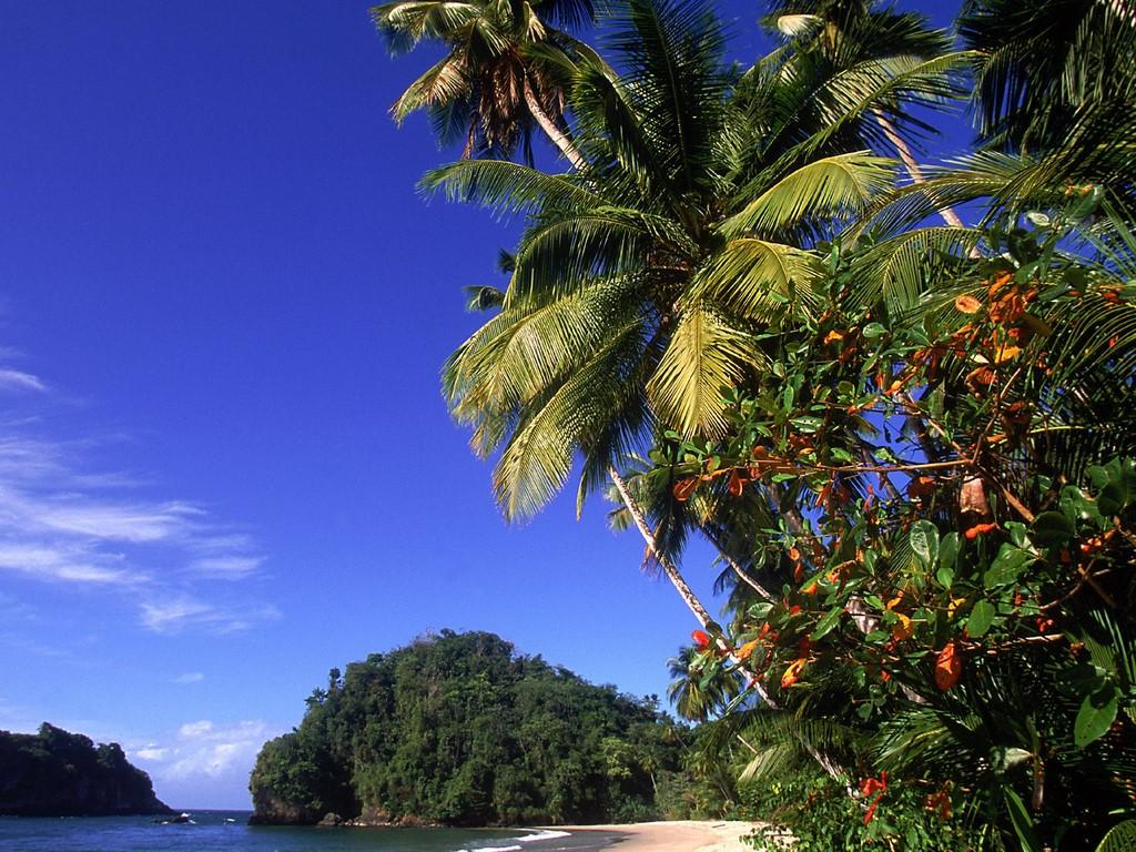 http://2.bp.blogspot.com/_eZunZCXnyLw/TFkPsnIMRiI/AAAAAAAAADM/iRerM_Grt54/s1600/Paria_Beach,_Trinidad_and_Tobago.jpg
