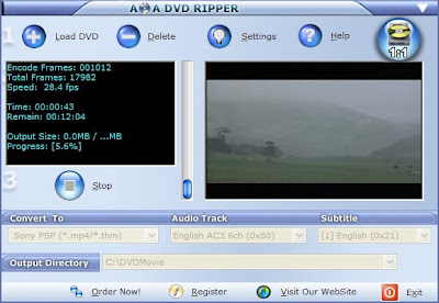 DVD to psp