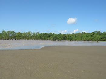 Praia do Goiabal