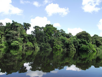 Rio Calçoene