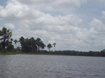 Rio Piririm