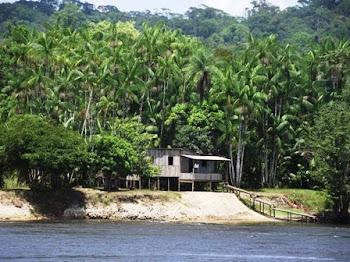 Casa às margens do rio Amapari