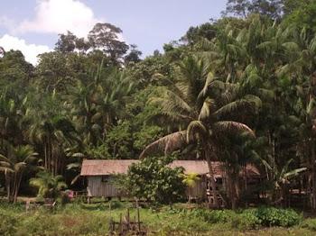 Casa em Serra do Navio