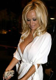 Pamela Anderson new E! show