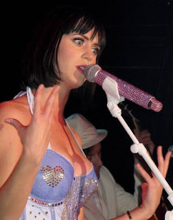 Katy Perry robbery
