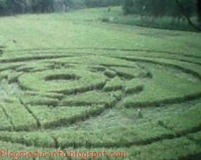 crop-circles-sleman1