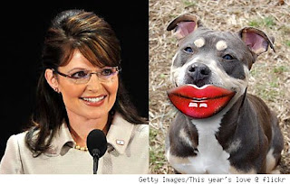 From L to R: Pitbull, Governor Palin