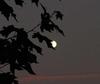 Al esconder con la luna