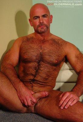 Steve majors gay porn