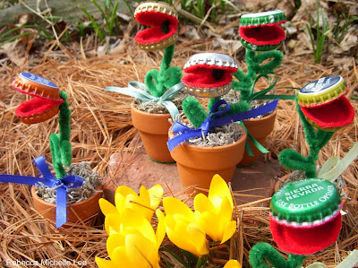 Click here to see what Venus Fly Traps are Available. Custom Requests are always welcomed!