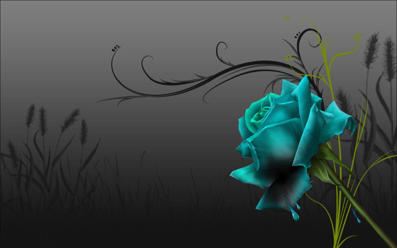 http://2.bp.blogspot.com/_ecNZSVR4JCI/TQudzGEwuHI/AAAAAAAAAUo/qcSHVWs_SpQ/s1600/81178.jpg