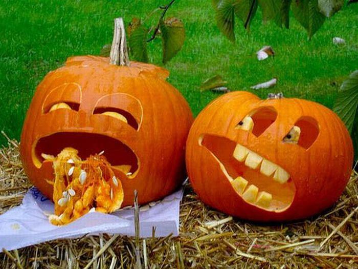 Funny pumpkins ( part 1/2 )   PicsCrunch