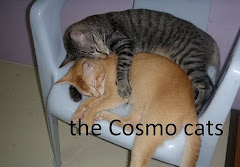 the Cosmo cats ... beware !!!