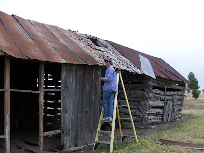 Jimbo's Cabin blog: Part I - The first step: Removing the Tin roof