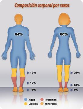 Presenta asociada que hacer para bajar la grasa del higado