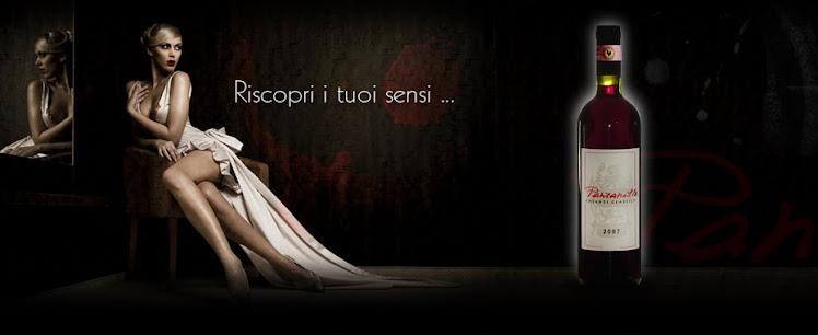 Chianti Classico - Panzanello.it