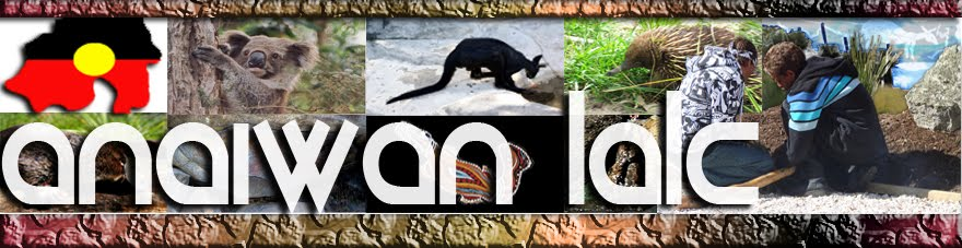 Anaiwan Local Aboriginal Land Council