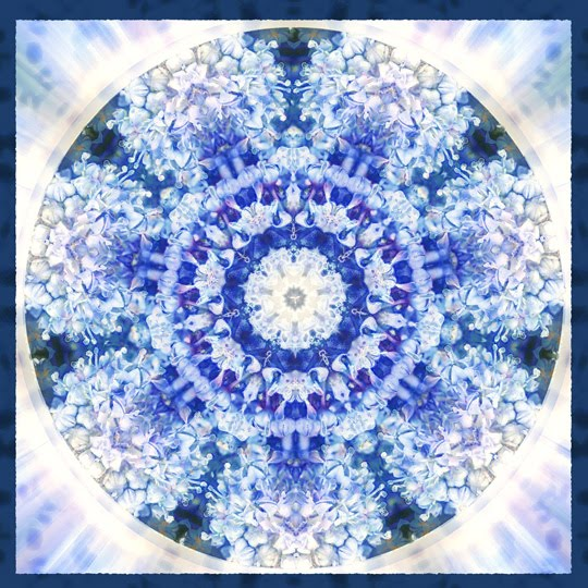 truth blossoms mandala