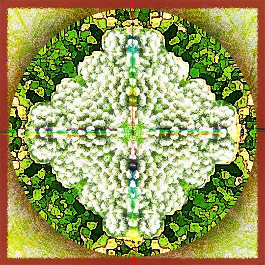 Image Result For Mandalas For Little