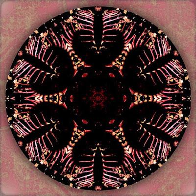 Heart's Shadow Mandala