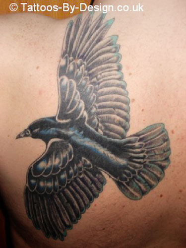 Tribal raven tattoo designs