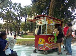 La Plaza Victoria