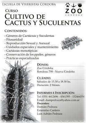 Succulentas curso de cultivo de cactus y suculentas for Curso cactus y suculentas