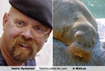 jamie hyneman from mythbusters
