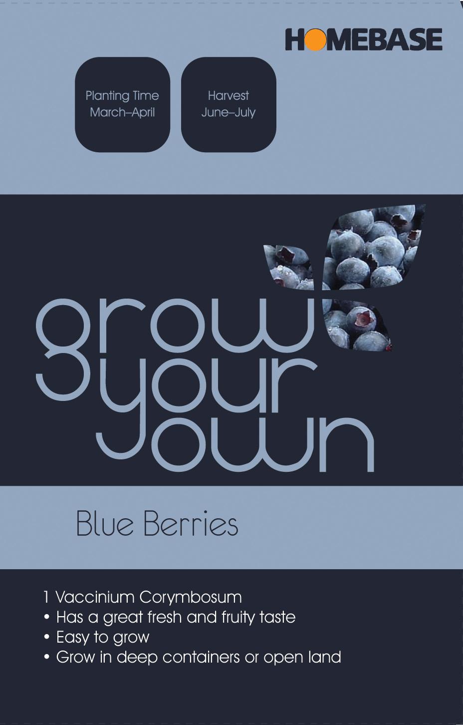 [blueberry+frony]