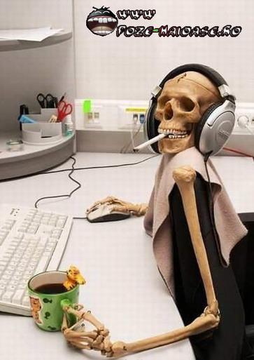 scheletu muzician