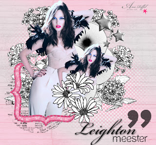 Leighton Meester COLLAGE no pfs