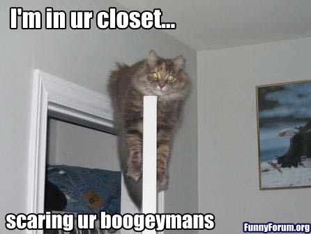 Funny Cat Picture Thread! - Page 3 Funny-cat-on-the-door