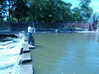Calidad de las aguas