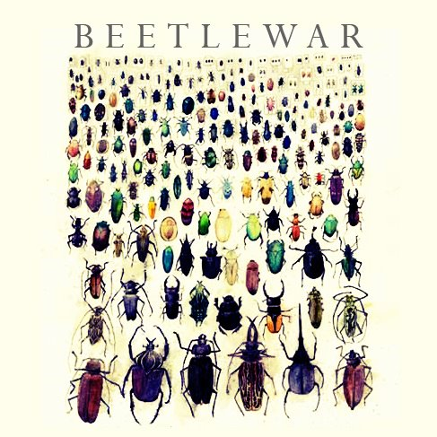 Beetlewar ATTACK