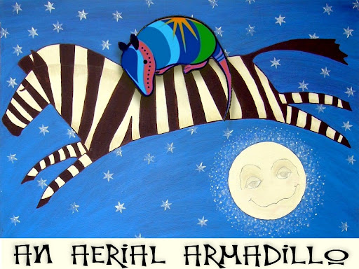 AN AERIAL ARMADILLO