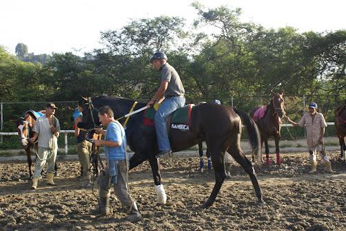 SAMBUCA EN BUSCA DEL CLASICO JUAN CARMONA