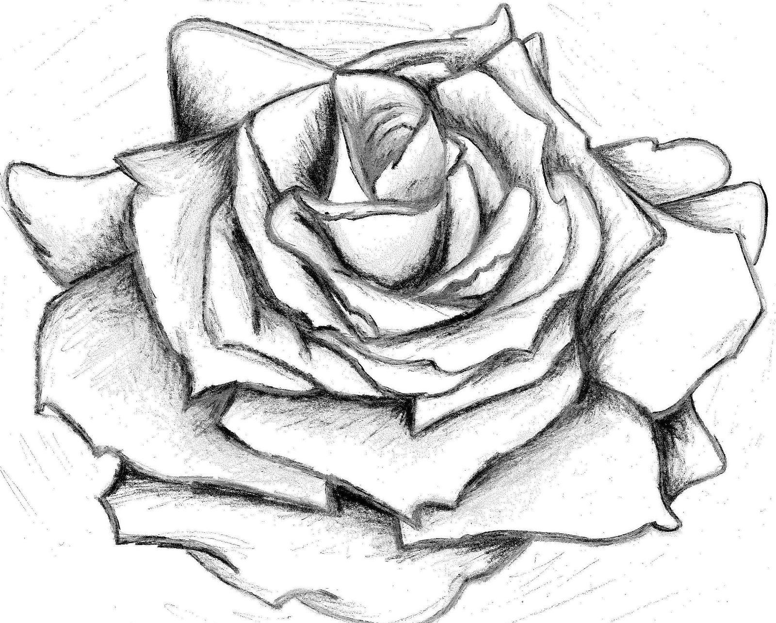 rose template 1