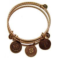 Carolyn Rafaelian, jewelry