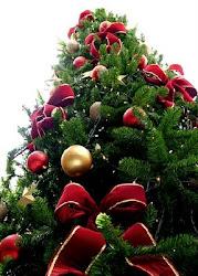 C'est déjà Noël