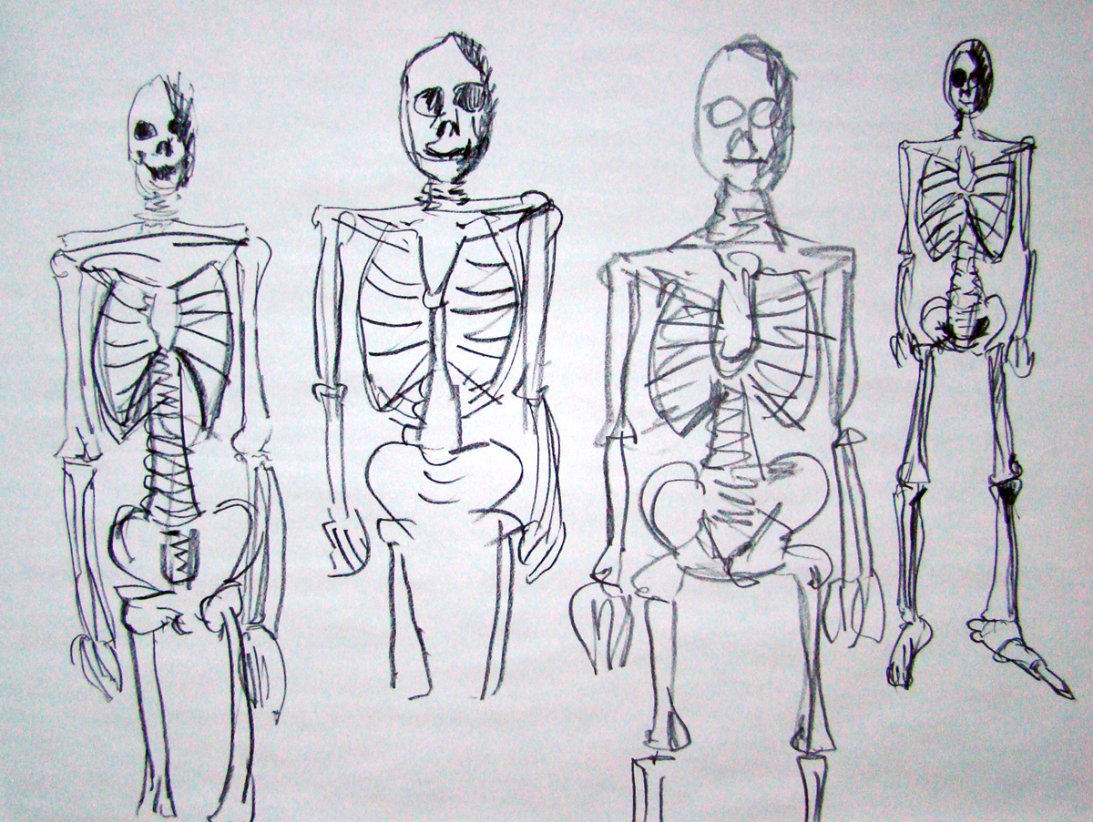 an analysis of the bones in space Air & space planet earth  the research contradicts a forensic analysis of the remains in 1941 that described the bones as belonging to a male  despite jantz's skepticism about the 1941 .