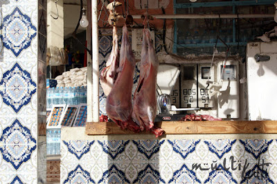 mięsiste Maroko