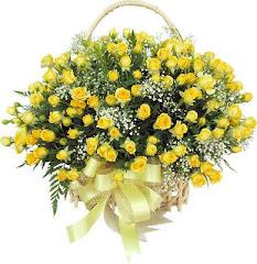 Flores para meus seguidores