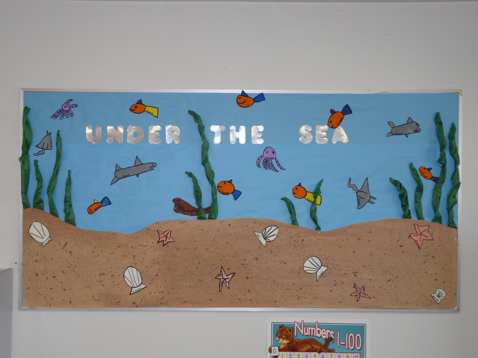 Outstanding Under the Sea Bulletin Board Ideas 1600 x 1200 · 139 kB · jpeg