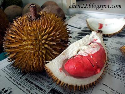 http://2.bp.blogspot.com/_ew0ygfS5tl4/SXXkeGBCURI/AAAAAAAADzE/U3auGeqdgU0/s400/DSCF0593+Sabah+red+jungle+durian+1.jpg