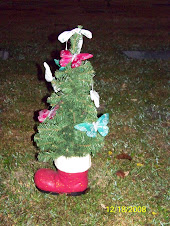 Chrismas tree for Jack