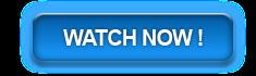 Watch Little Fockers Online Megavideo