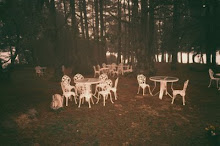 Tables and chairs in the forest
