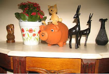 Toy animals in Brazilian home
