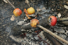Apples Roasting on Campfire
