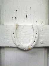 Horseshoe door